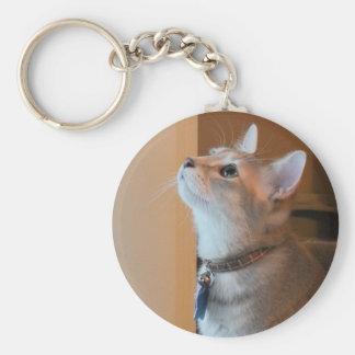 Llavero del gatito del jaspe