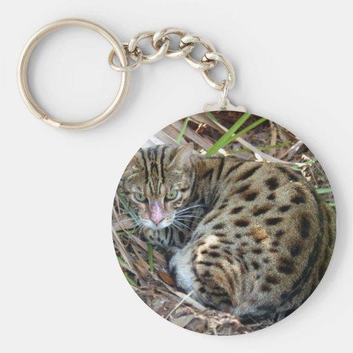 Llavero del gato de Bengala