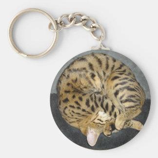 Llavero del gato de la sabana