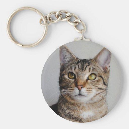 Llavero del gato de Tabby