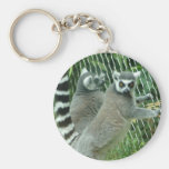 Llavero del Lemur