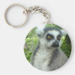 Llavero del Lemur de Madagascar