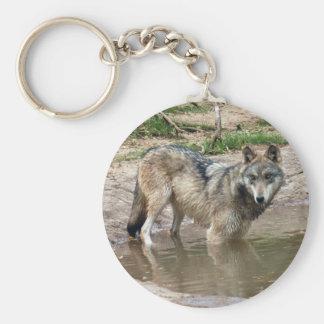 Llavero del lobo de los lobos