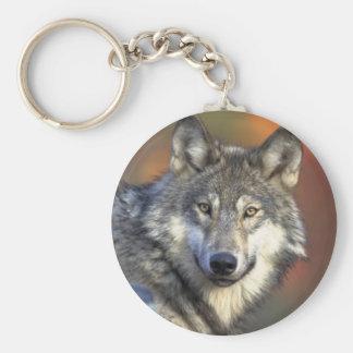 Llavero del lobo gris