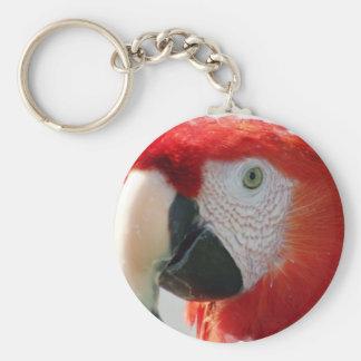 Llavero del Macaw del escarlata