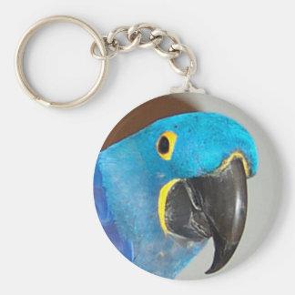 llavero del macaw del jacinto