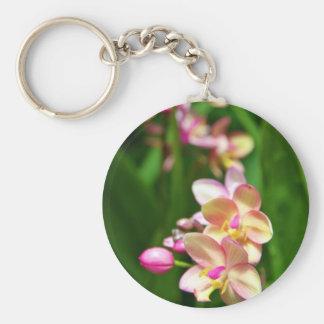 Llavero del Orchidaceae
