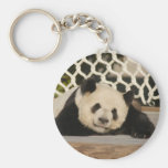 Llavero del oso de panda gigante