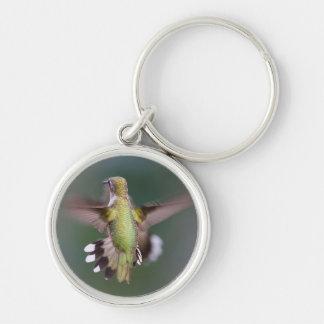 Llavero del pájaro del tarareo