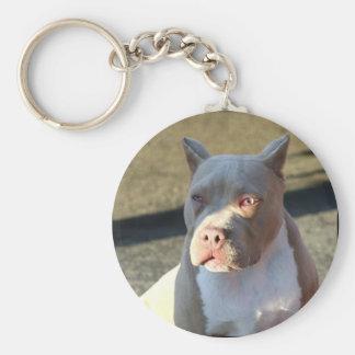 Llavero del perrito de Staffordshire Terrier ameri