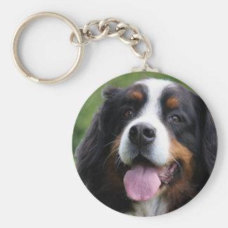 Llavero del perro de montaña de Bernese, idea del