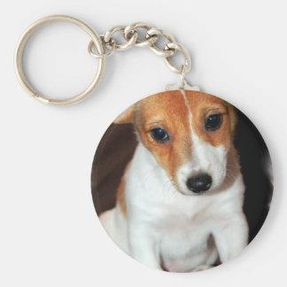 Llavero del perro de perrito de Jack Russell Terri