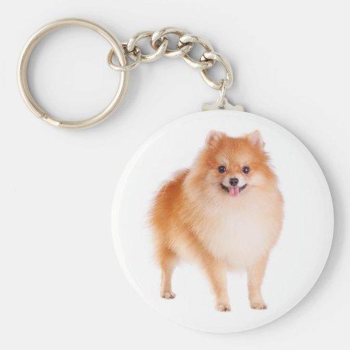 Llavero del perro de perrito de Pomeranian Pom Pom