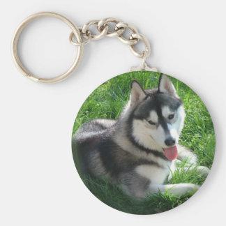 Llavero del perro del husky siberiano