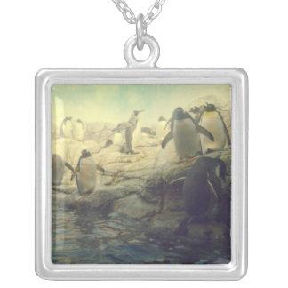 Llavero del pingüino colgante cuadrado
