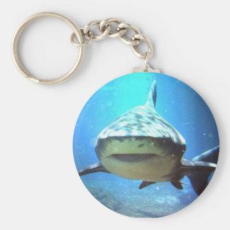 Llavero del tiburón