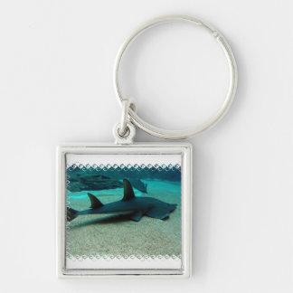 Llavero del tiburón de arena