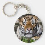 Llavero del tigre de Zambar