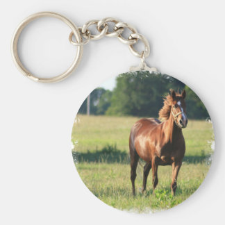 Llavero derecho del caballo de la castaña