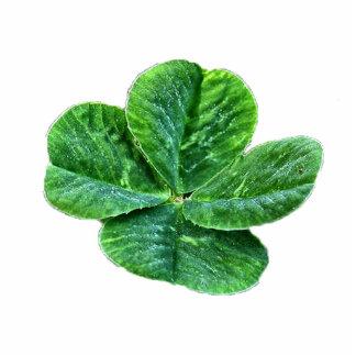 llavero esculpido trébol de cuatro hojas llavero fotográfico