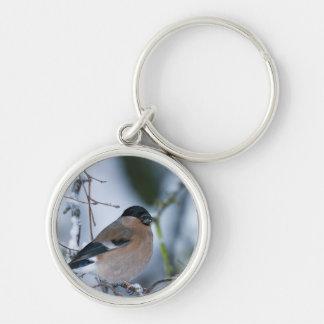 Llavero femenino del Bullfinch