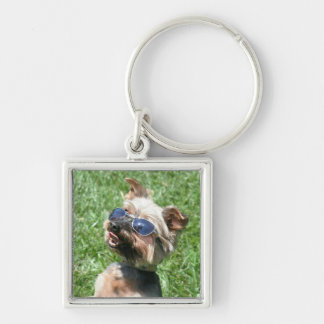 Llavero fresco de Yorskshire Terrier