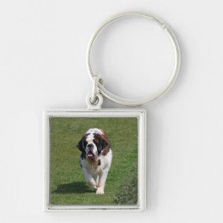 Llavero hermoso de la foto del perro de St Bernard