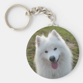 Llavero hermoso de la foto del perro del samoyedo,