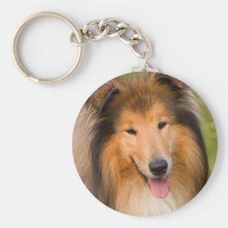 Llavero hermoso del retrato del perro del collie,