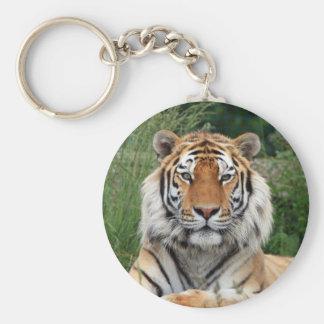 Llavero hermoso principal de la foto del tigre, ll