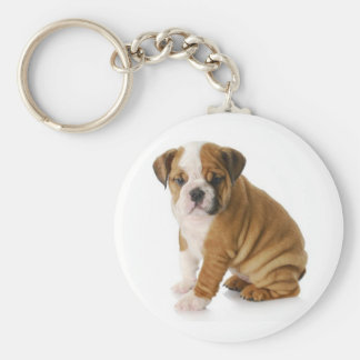 Llavero inglés lindo del perro de perrito del dogo