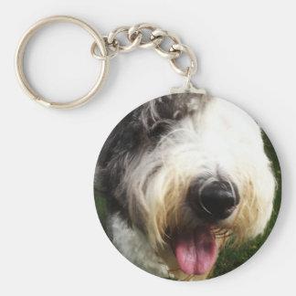 Llavero inglés viejo del perro pastor - nariz gran
