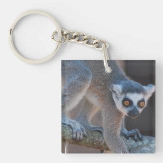 Llavero joven del Lemur