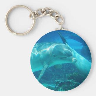 Llavero juguetón de los delfínes