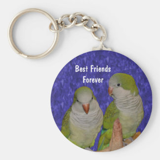 Llavero lindo de la amistad del pájaro de los mejo