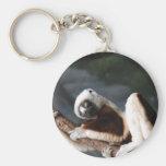 Llavero lindo del Lemur de Sifaka