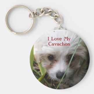Llavero lindo del perrito de Cavachon