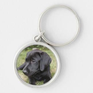 Llavero negro lindo del perrito del labrador retri