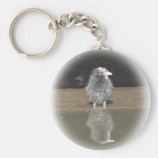 Llavero: Polluelo de la polla de agua Llavero Redondo Tipo Pin