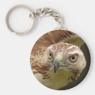 Llavero principal del halcón