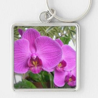 Llavero púrpura de la orquídea
