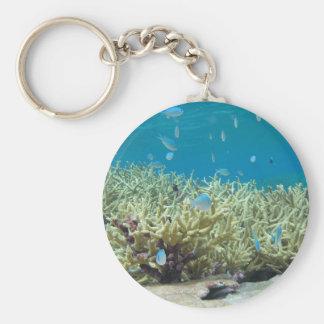 Llavero que muestra pescados marinos de los