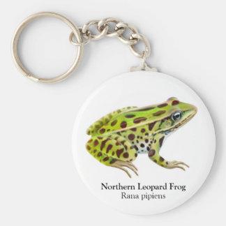Llavero septentrional de la rana de leopardo