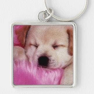 Llavero soñoliento del perrito de la abrazo