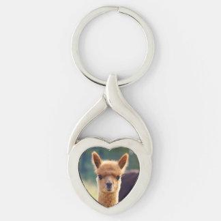Llavero torcido alpaca hermosa del corazón llavero plateado en forma de corazón
