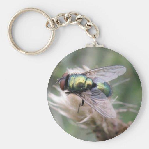 Llavero verde de la macro de la mosca de la botell
