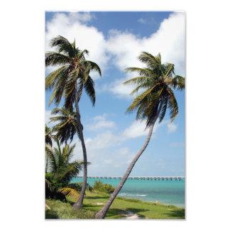 Llaves de la Florida del parque de estado de Bahía Fotografía