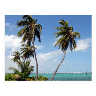 Llaves de la Florida del parque de estado de Bahía Tarjeta Postal
