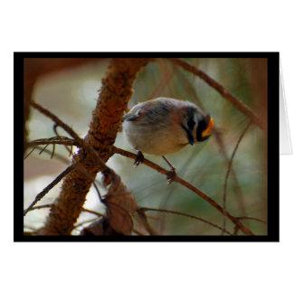 Llegando - la tarjeta de nota del pájaro (espacio