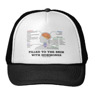 Llenado al borde de las hormonas (anatomía) gorros bordados